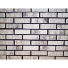 Z-Brick Americana 2-1/4 In. x 8 In. Silver Facing Brick Image 2